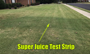 lawn super juice test strip